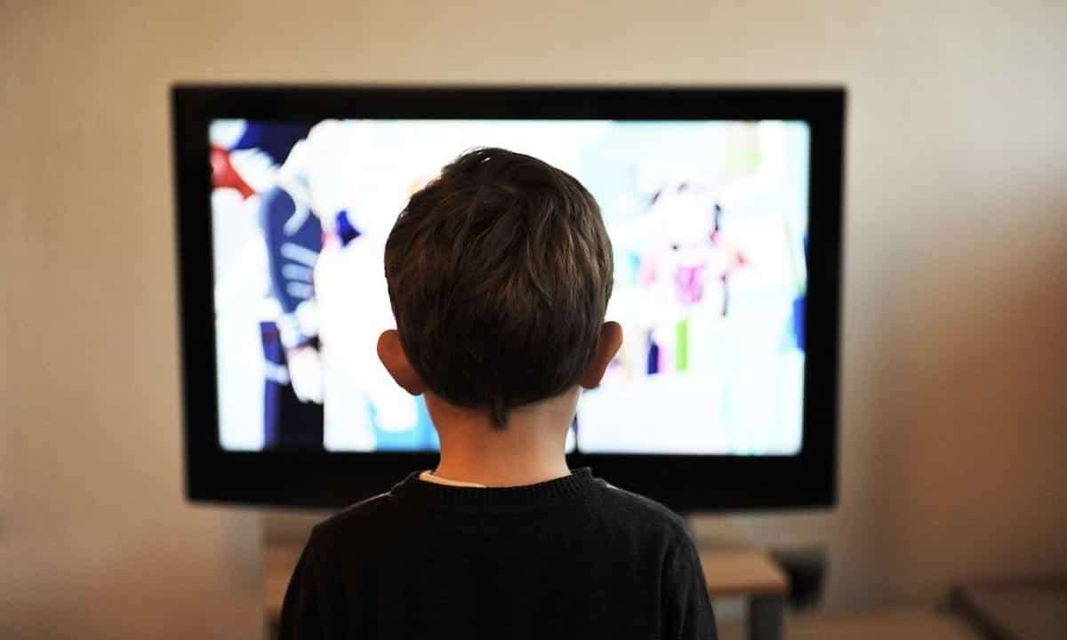 テレビ 見ない 時間 効率